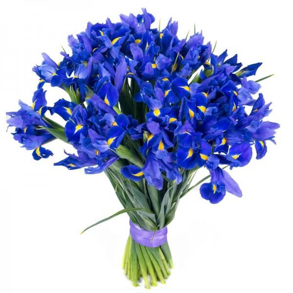 Купить свежесрезанные цветы киев #6